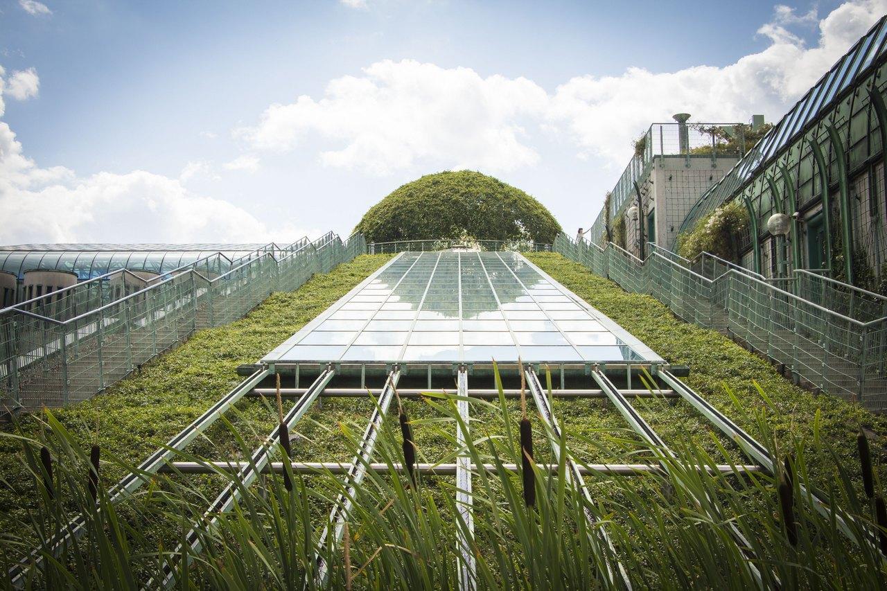 То ли крыша, то ли газон