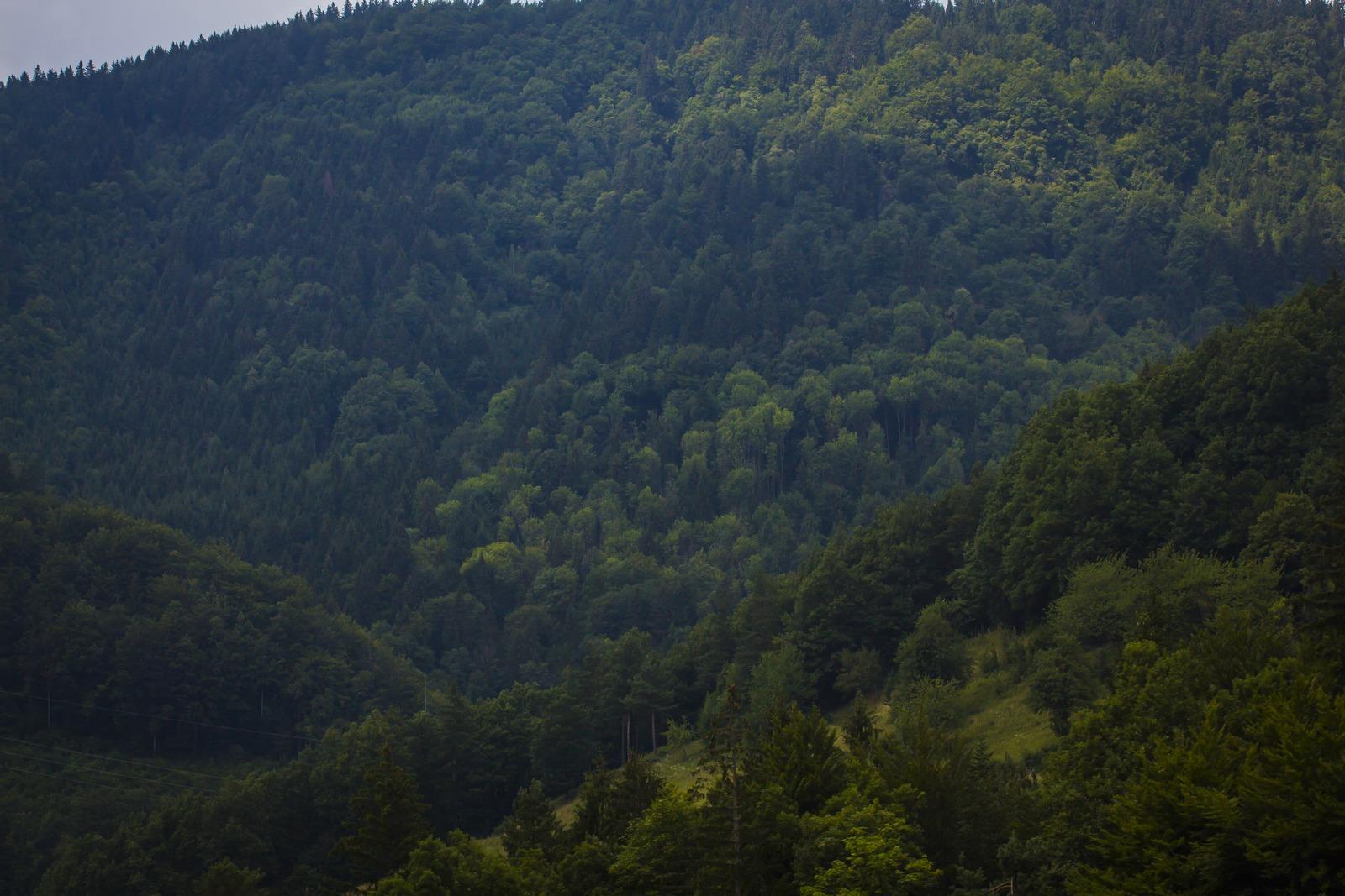 Словения. Горы все больше и выше.