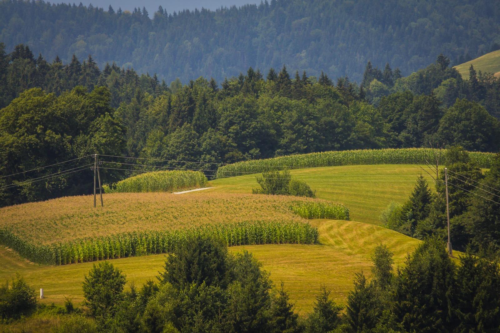 Словения. Красивые картинки за окном.