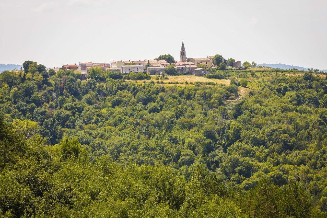 Драгуч, Истрия, Хорватия