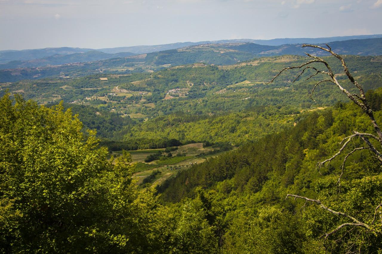 Долины Истрии